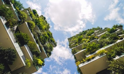 zöld építés