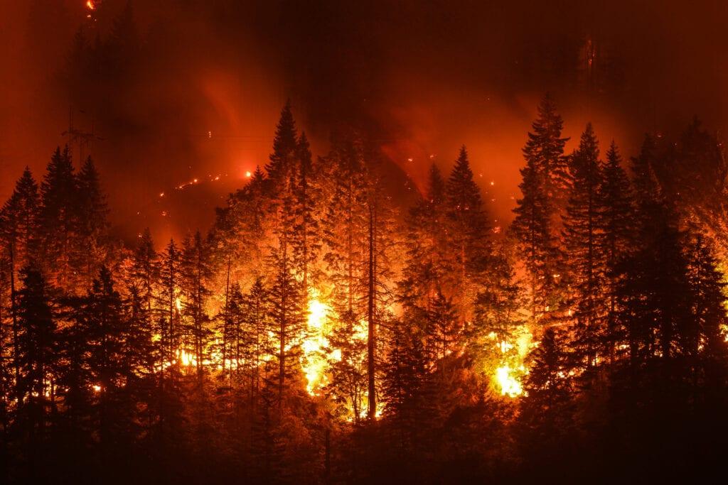 """Az egyre több tűzeset is a klímaváltozás """"eredménye""""."""
